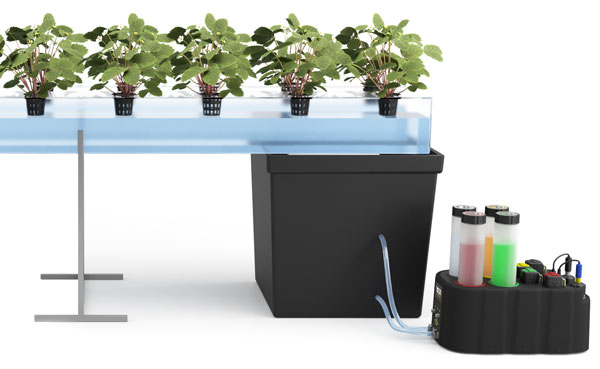 hydroponic system NIDO ONE management nutrient solution
